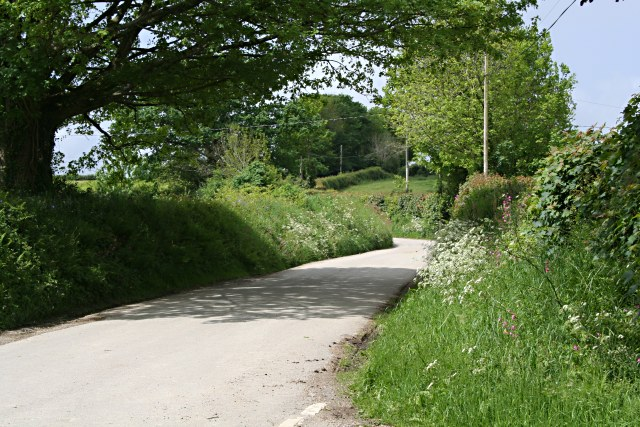 File:A Country Lane - geograph.org.uk - 439440.jpg
