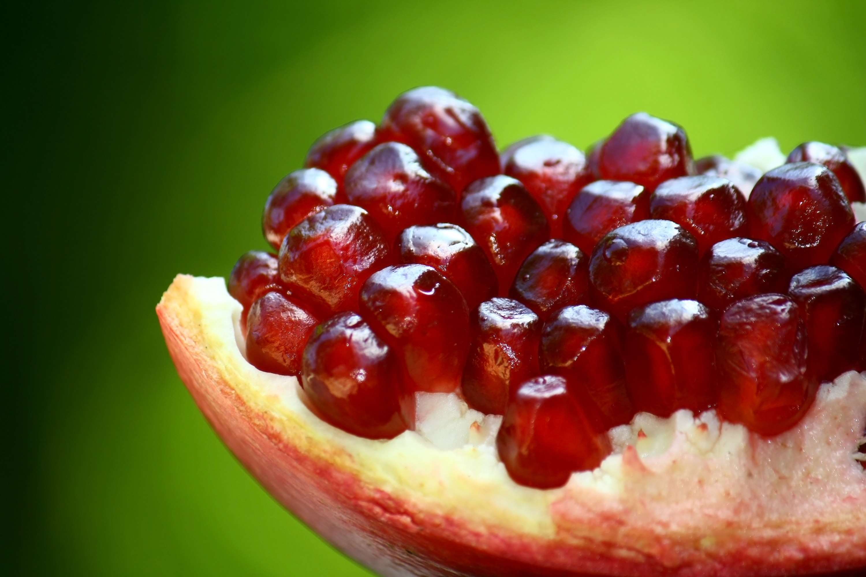Pomegranate - Wikipedia, the free encyclopedia