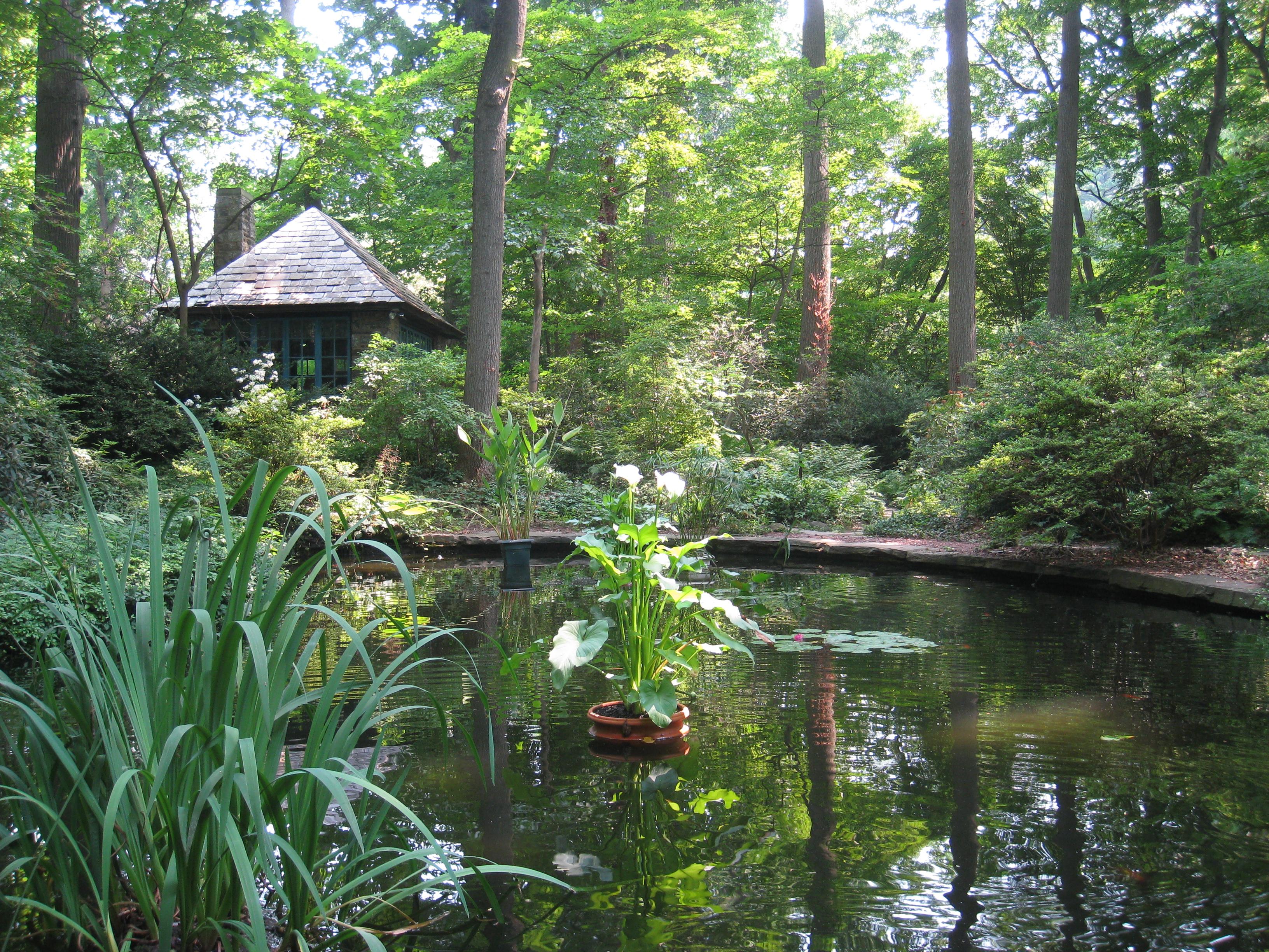 File Barnes Foundation Merion Pa Arboretum Pond Jpg