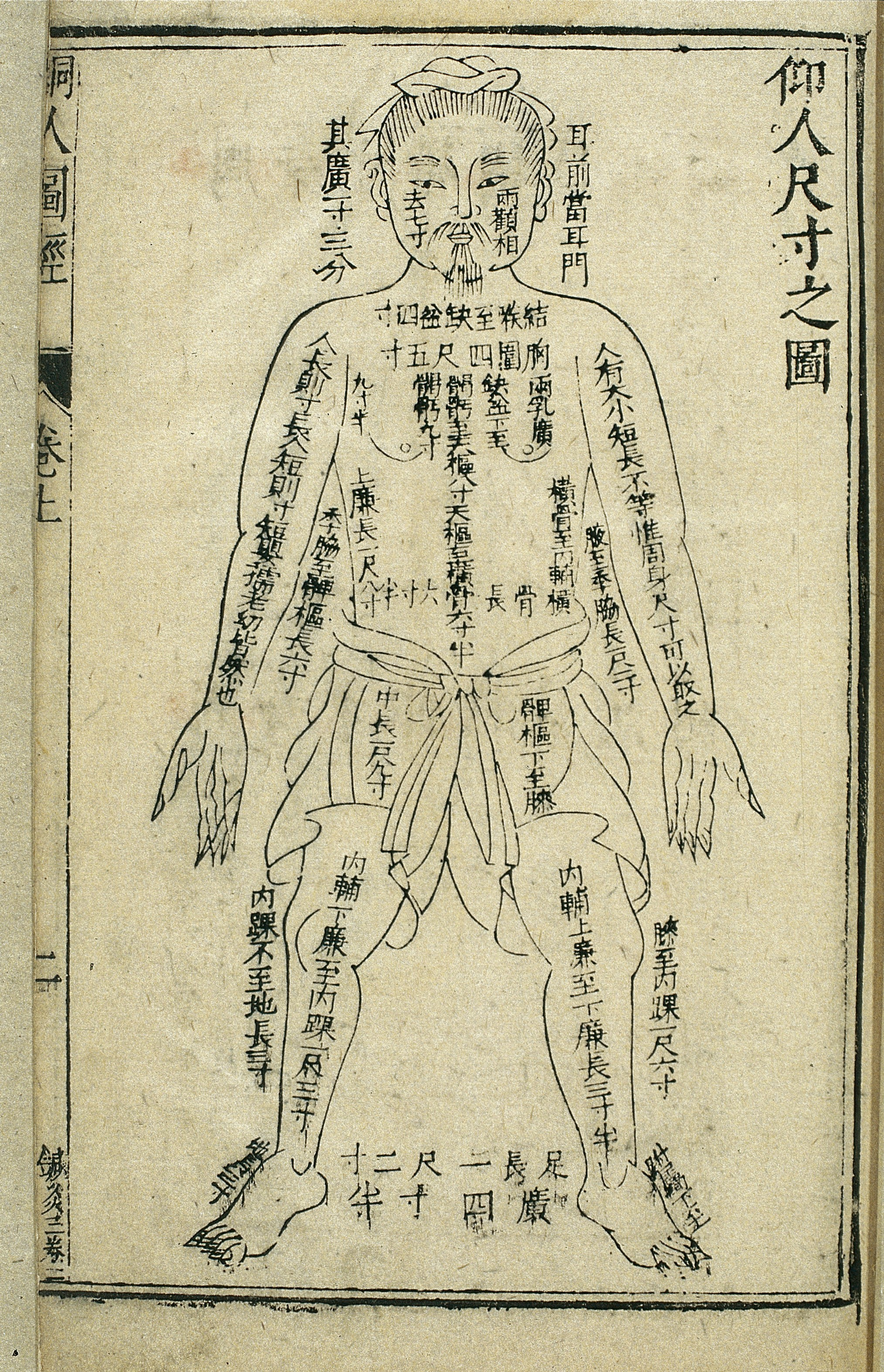 File:Body measurements, front view, Chinese woodcut, 1443 Wellcome  L0034732.jpg