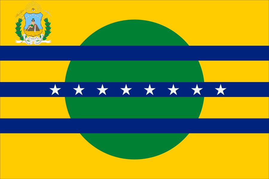 Depiction of Ciudad Guayana