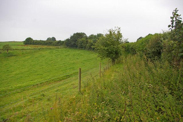 File:Bridleway near Mapperton - geograph.org.uk - 1032788.jpg