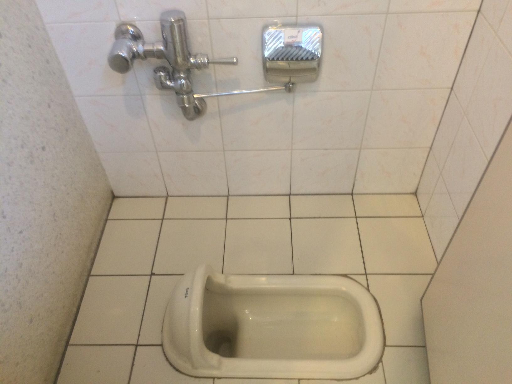 汲み取り トイレ 簡易 水洗