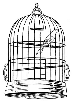http://upload.wikimedia.org/wikipedia/commons/e/ec/Cage_%28PSF%29.jpg?uselang=nl