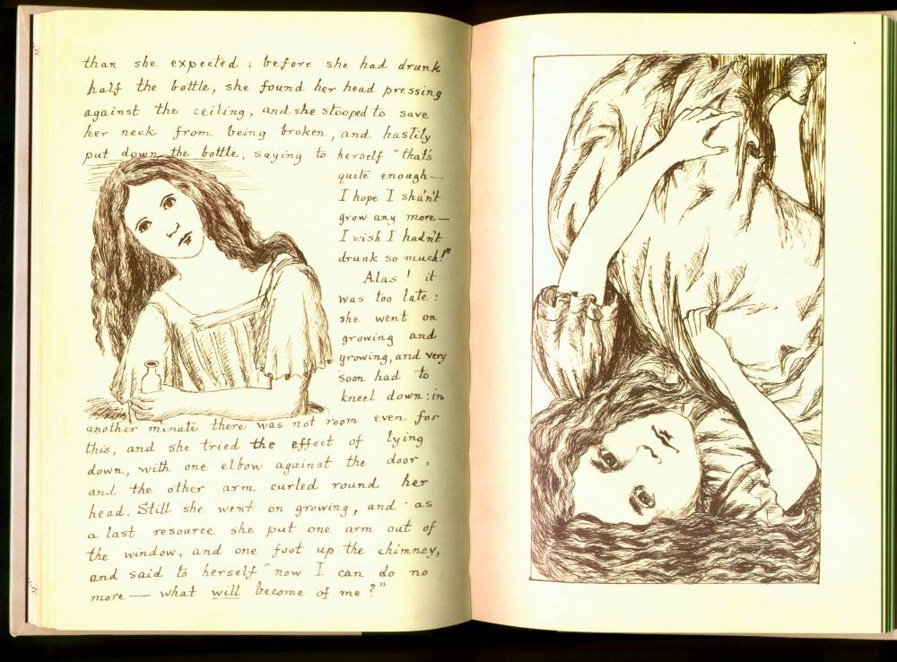 Alice In Wonderland Novel Pdf