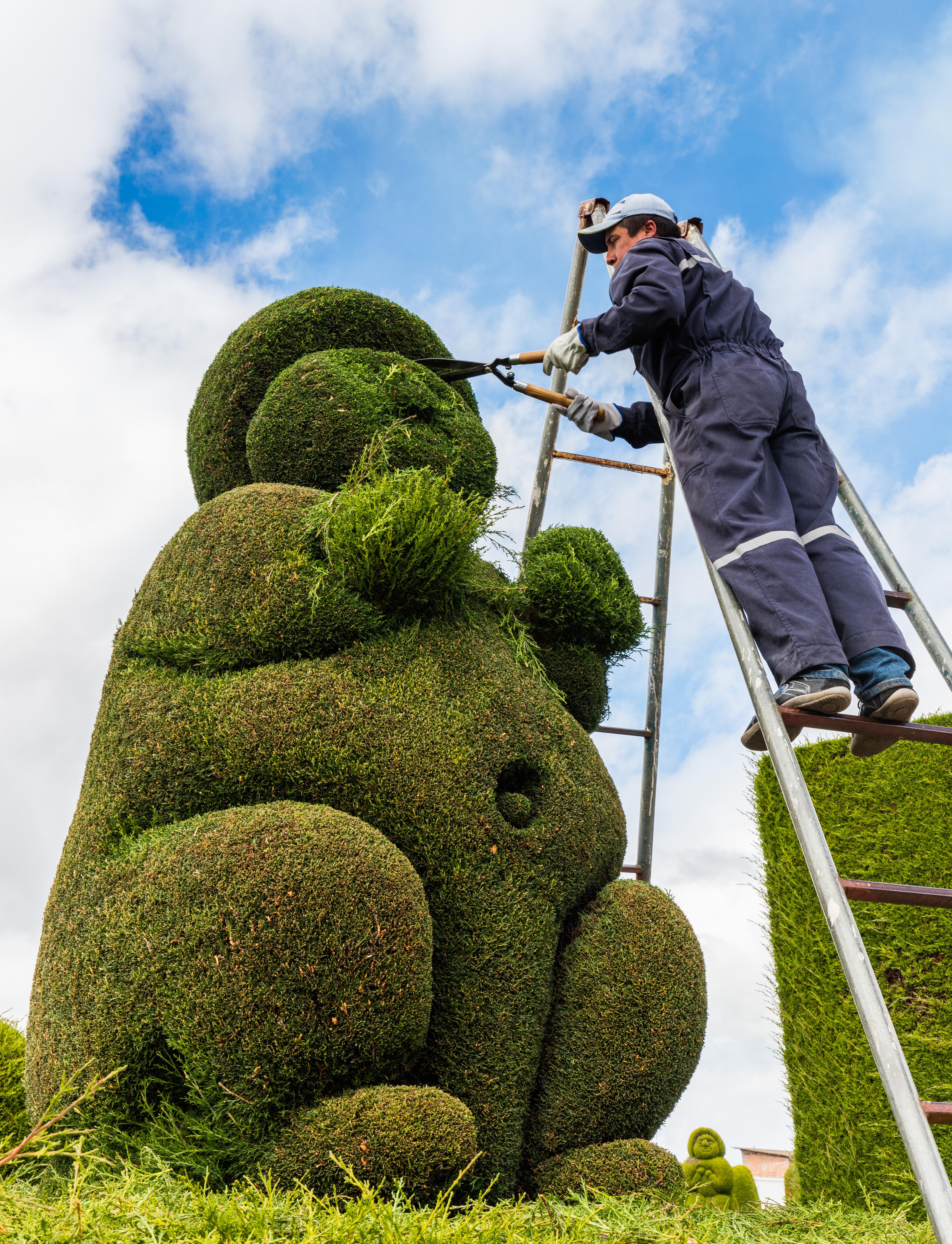 Fantastic Gardening Wikipedia Beutiful Home Inspiration Xortanetmahrainfo