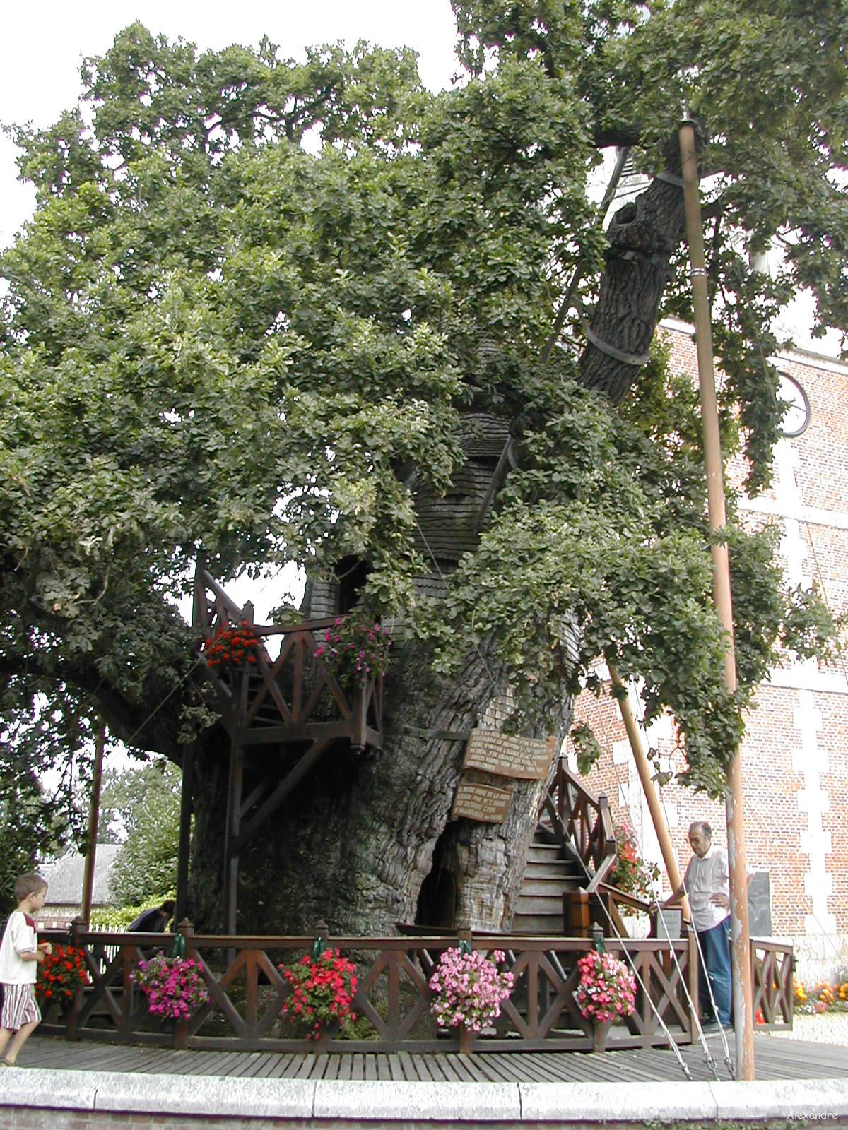 Chene Chapel Allouville