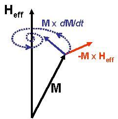 Damped Magnetization Precession.jpg