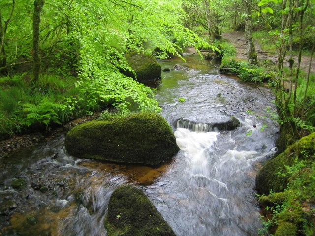 Dartmoor, Becka Brook - geograph.org.uk - 438841