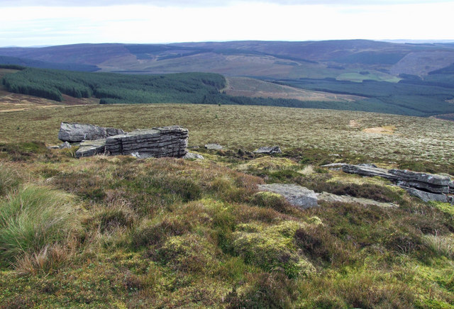 Deadwater Fell - geograph.org.uk - 570508