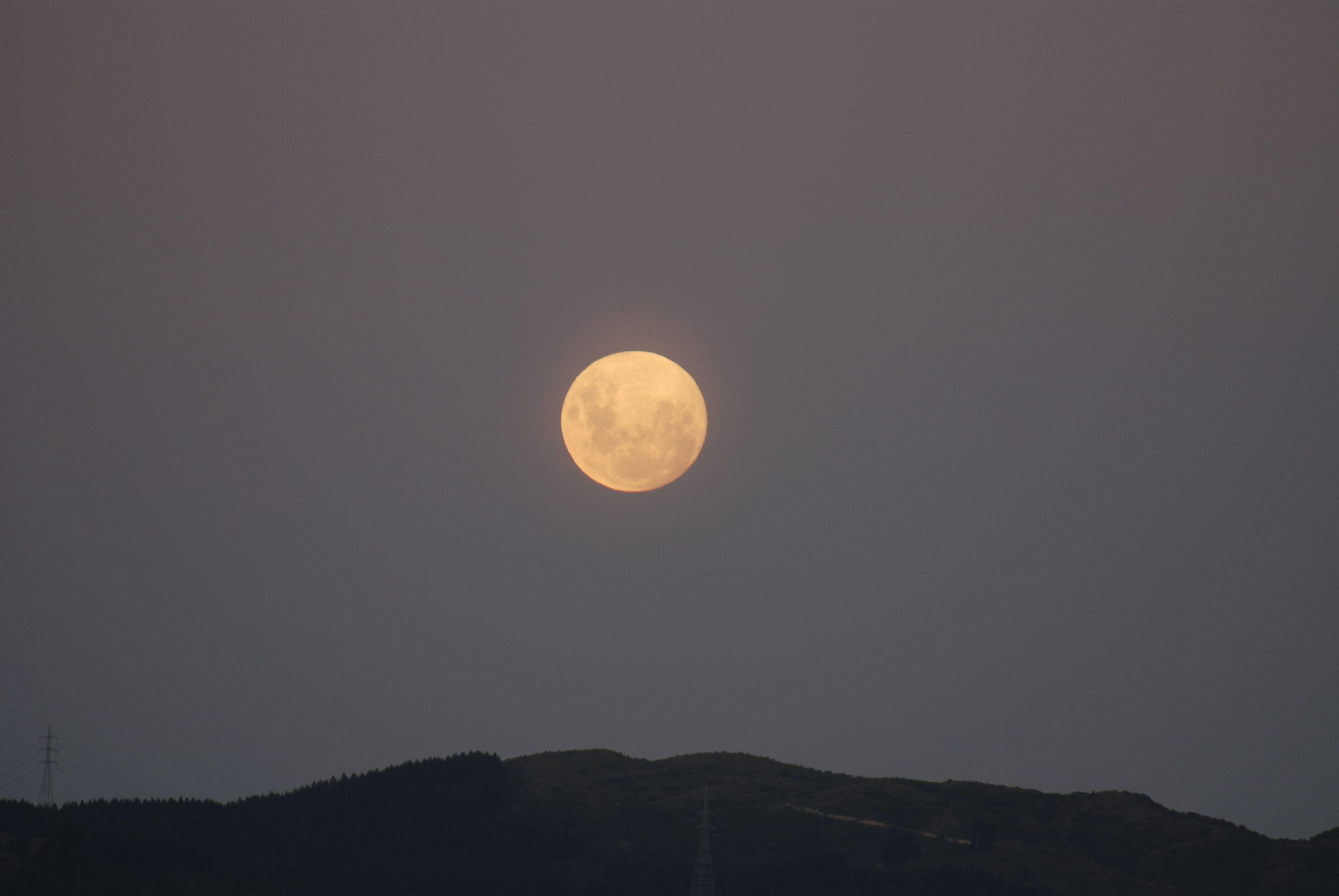 Https Commons Wikimedia Org Wiki File Full Moon Rising Jpg