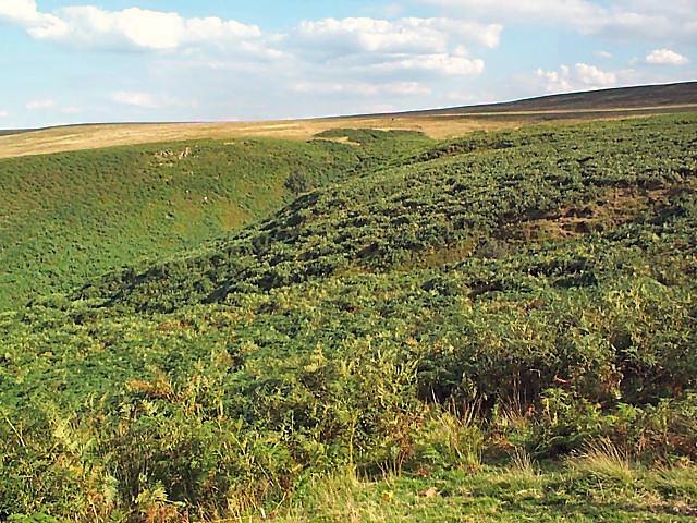 Grainings Head, Ilkley Moor - geograph.org.uk - 48274