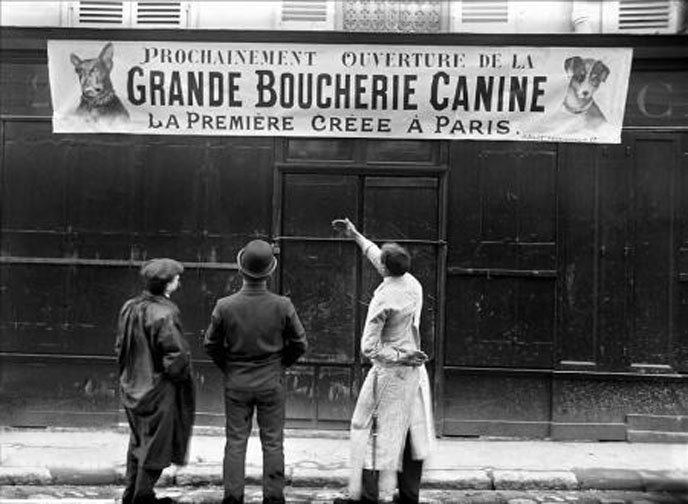 https://upload.wikimedia.org/wikipedia/commons/e/ec/Grande_Boucherie_Canine_a_Paris.jpg