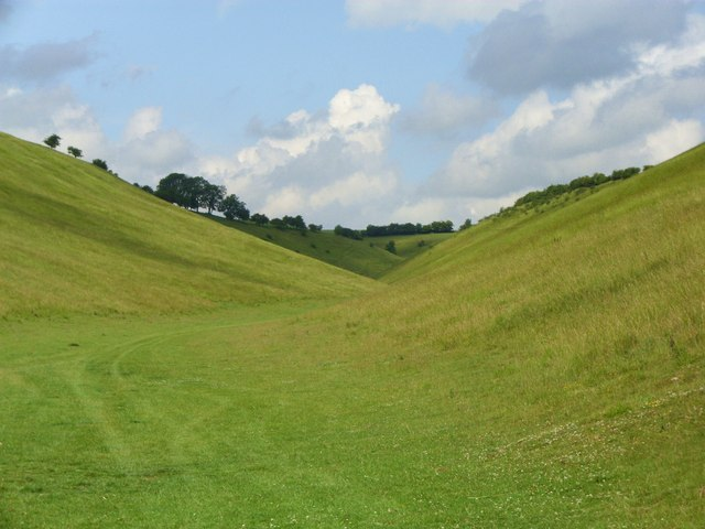 Holm Dale - geograph.org.uk - 1398312