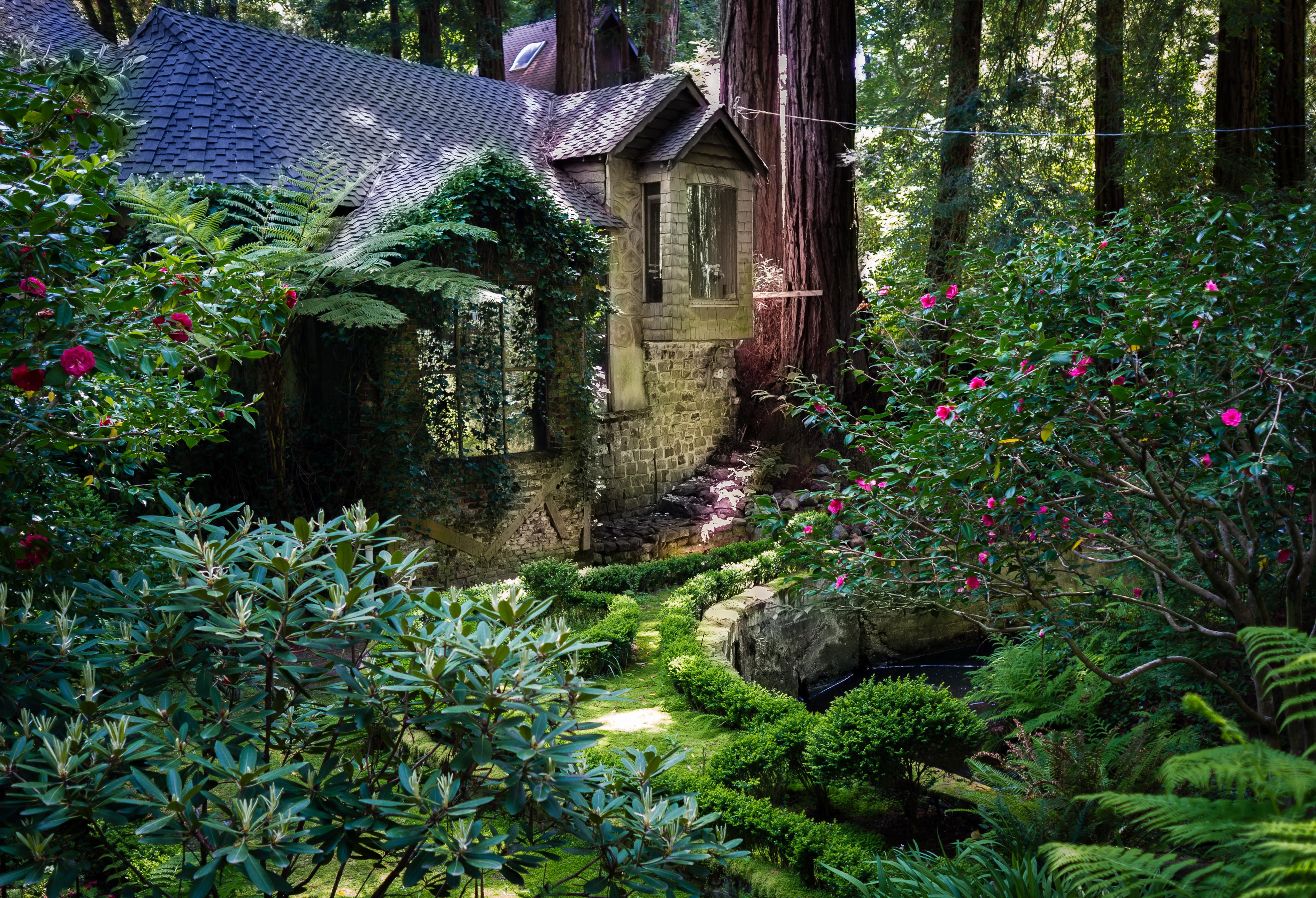 File house amongst redwood trees cascade for Cascade house
