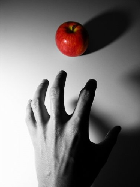 File:Monochrome hand reaches for red apple.jpg