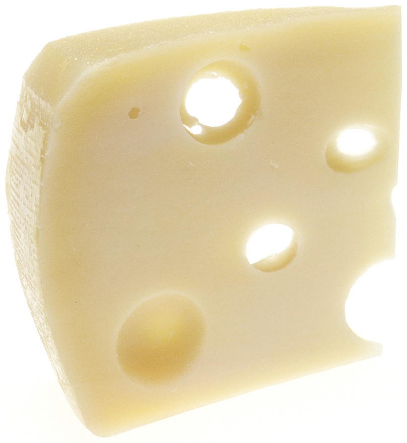 Can I give my dog cheese?