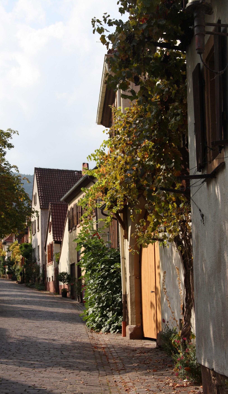 Rhodt Theresienstrasse.JPG