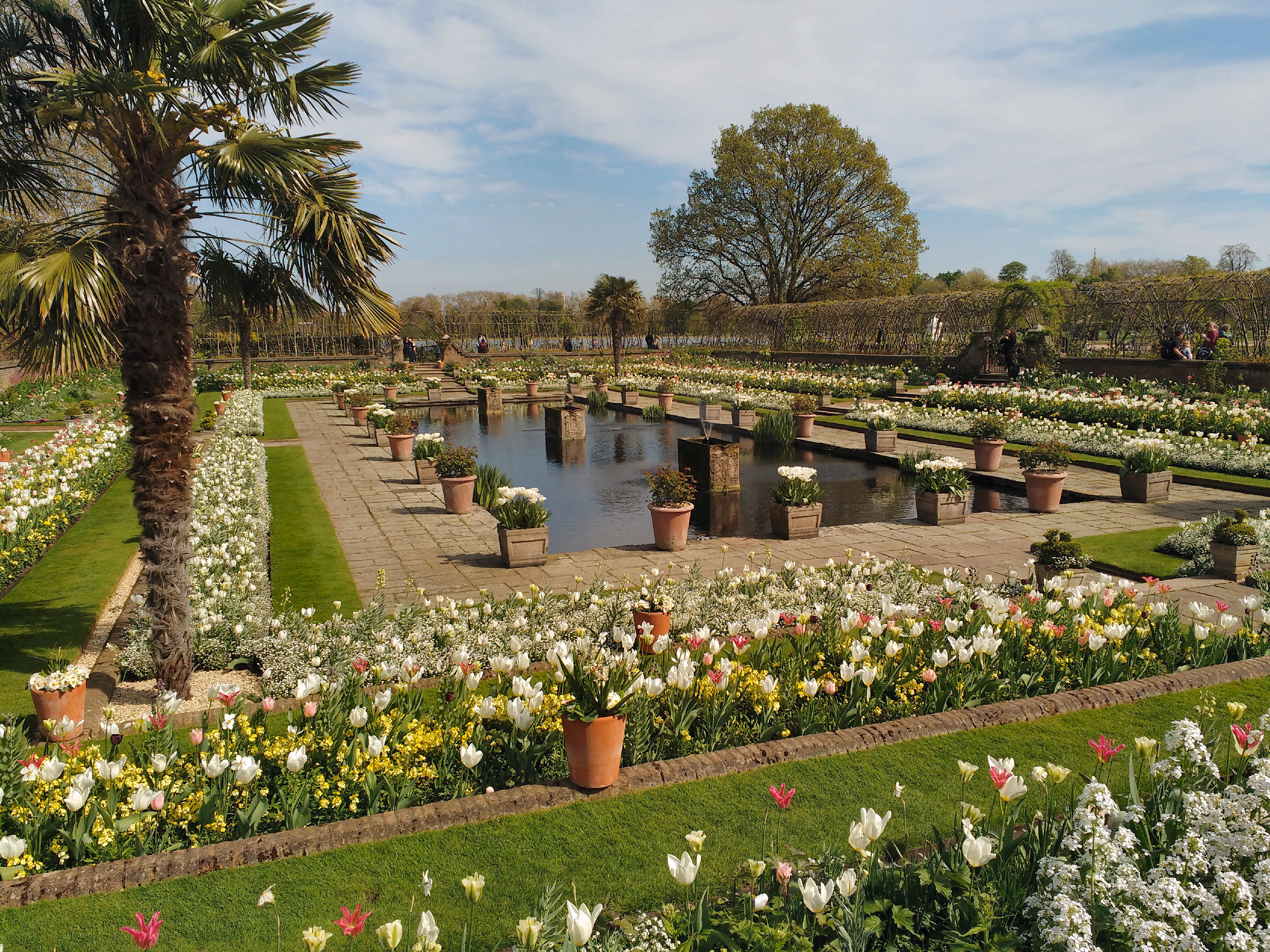 File:The White Garden, Kensington Palace.jpg - Wikimedia Commons