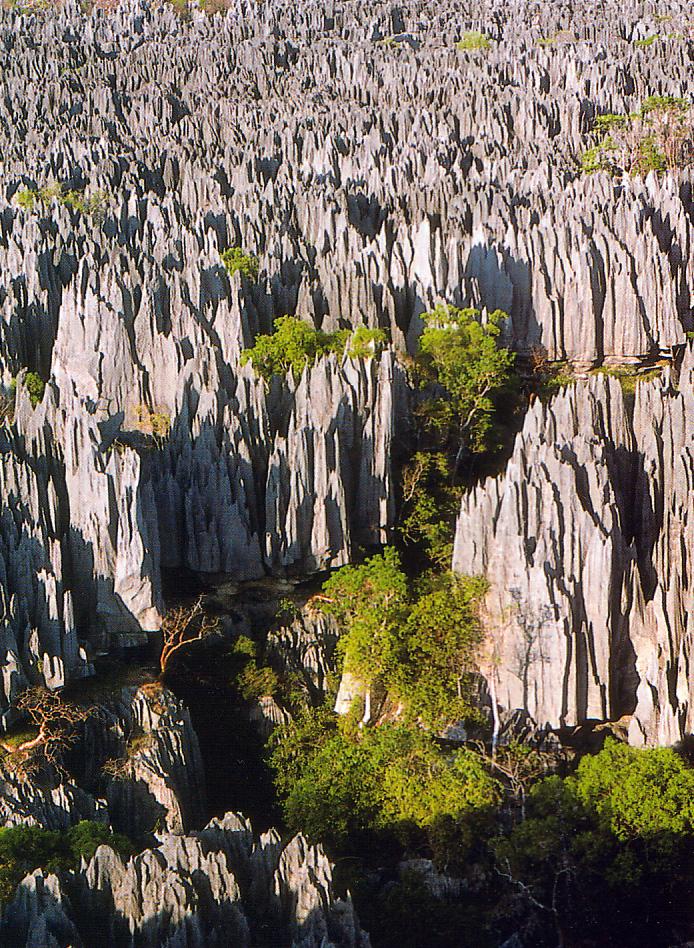 File:Tsingy de Bemaraha.jpg - Wikimedia Commons