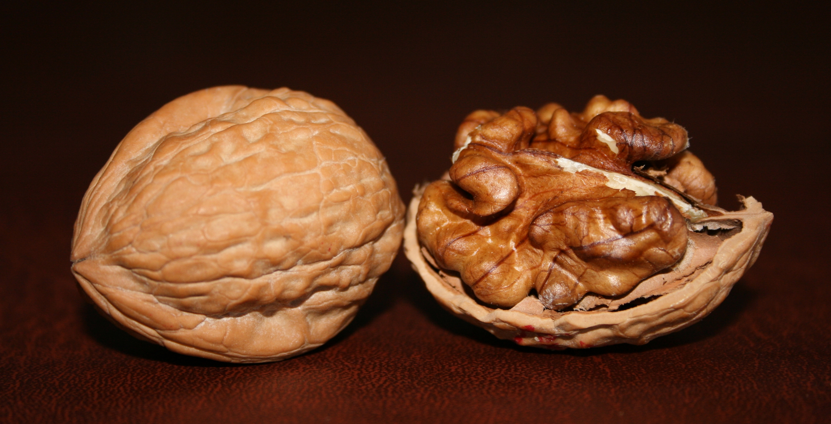 Image result for english walnuts