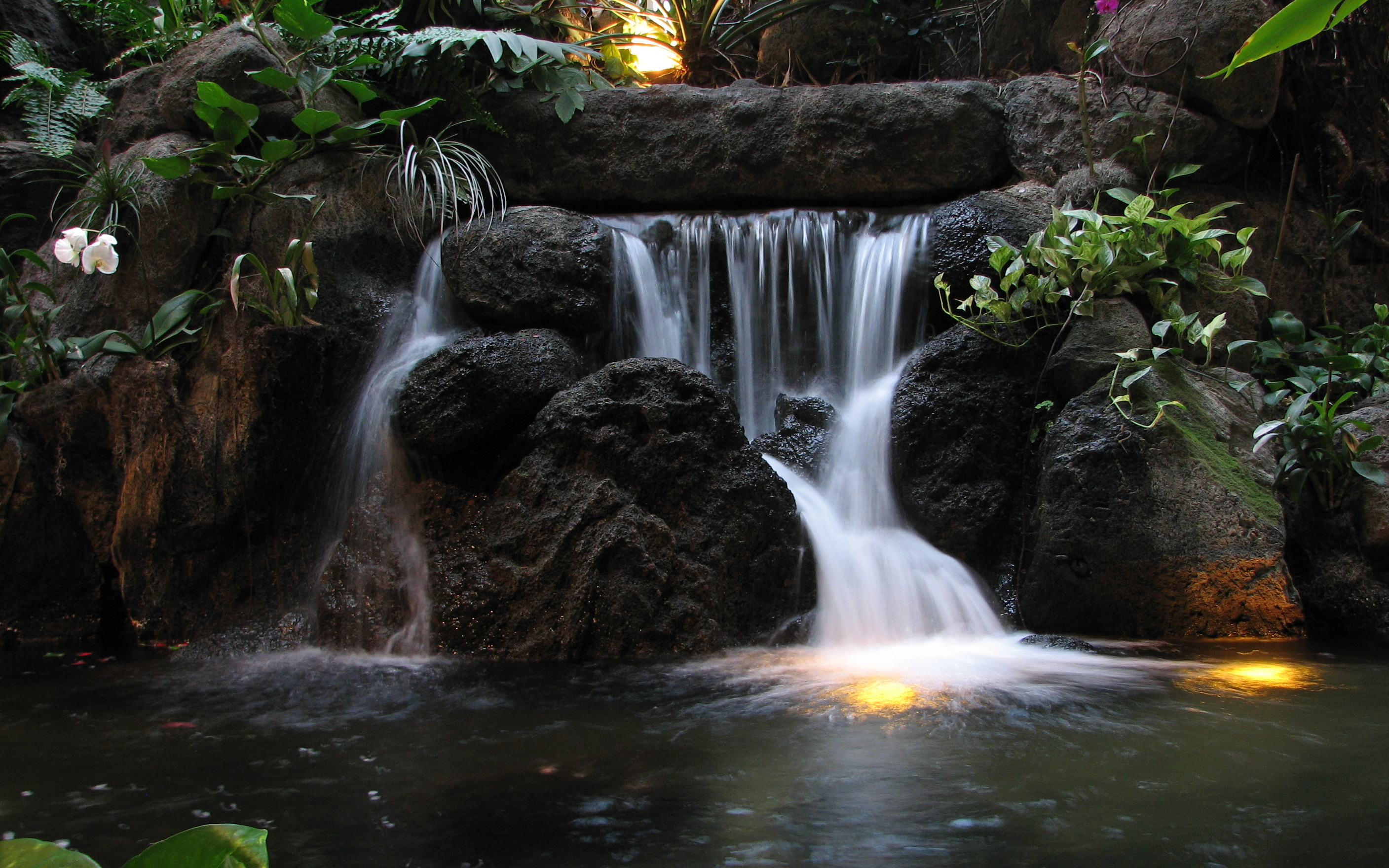 File:Waterfall at the Polynesian.jpg - Wikimedia Commons