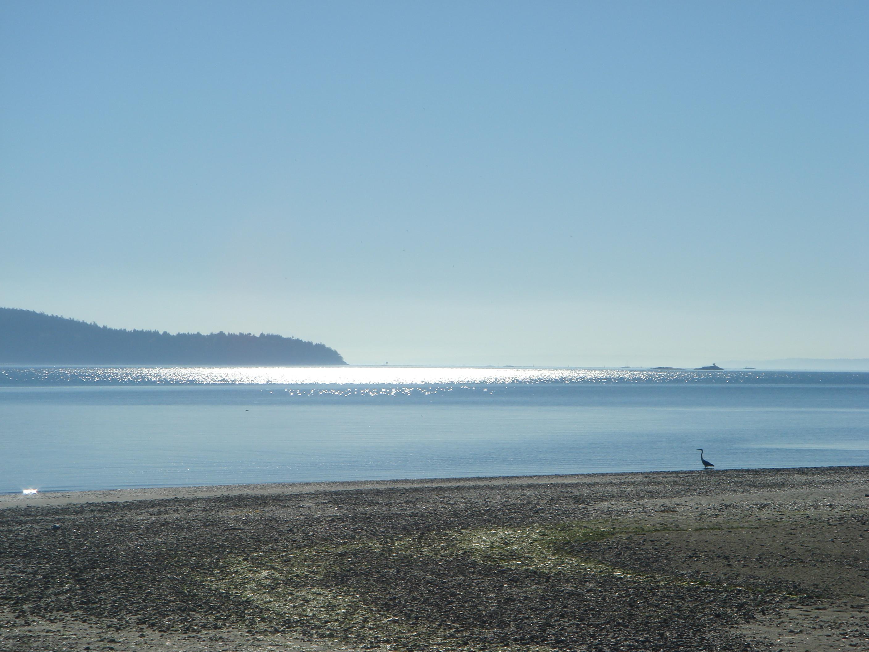 Whidbey Island (Washington State, USA).jpg