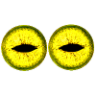 YAGF Logo.png