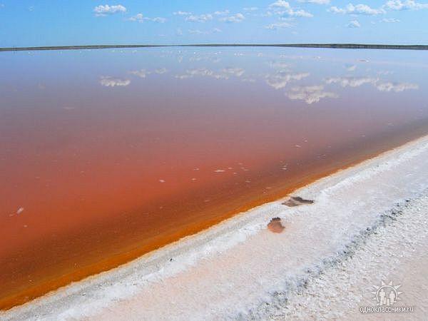 File:Малиновое Озеро с высоты.jpg