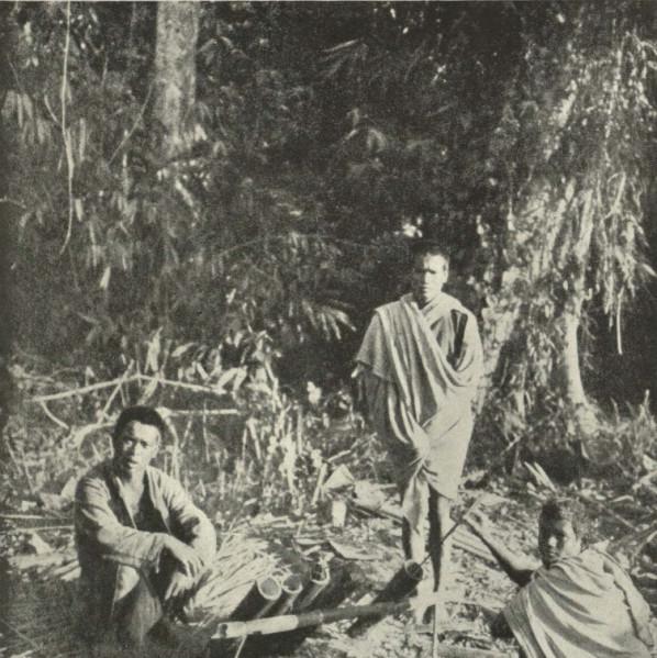 Bamboo Kitchen Utensils Uk