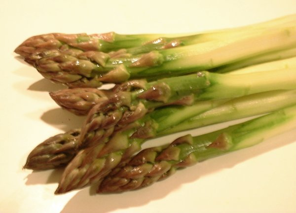Asperge wikiwand for Asperge plante interieur