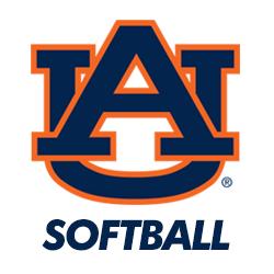 State Softball T Shirt Designs