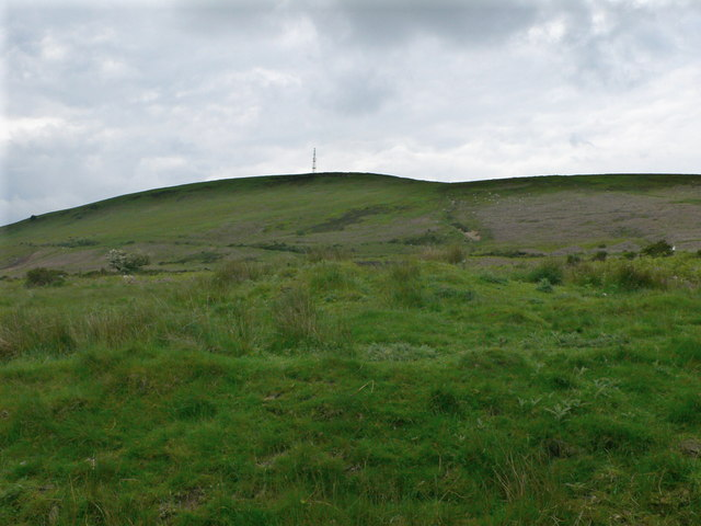 Common above Cwmbran - geograph.org.uk - 836543