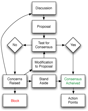 Flowchart showing how a consensus-model decision is made
