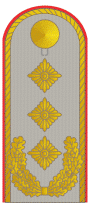 DH331-Generalleutnant.png