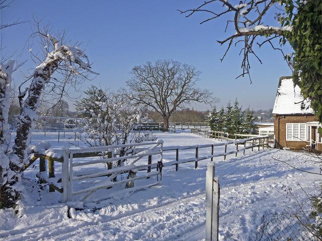 File:Farmland, Trent Park, Enfield - geograph.org.uk - 1149067.jpg