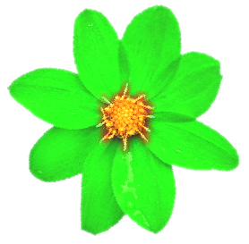 File:Green-flower.png - Wikimedia Commons