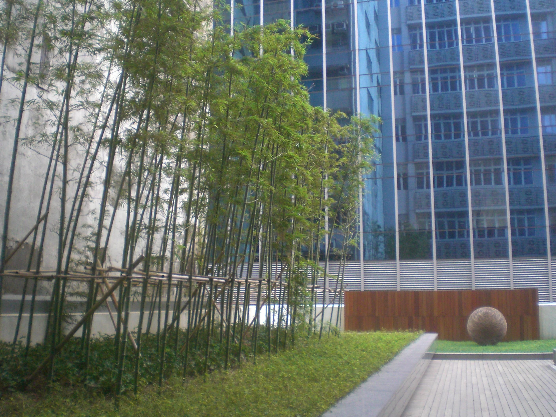 file hk kt223 manulife financial centre 平台花園 podium garden 01