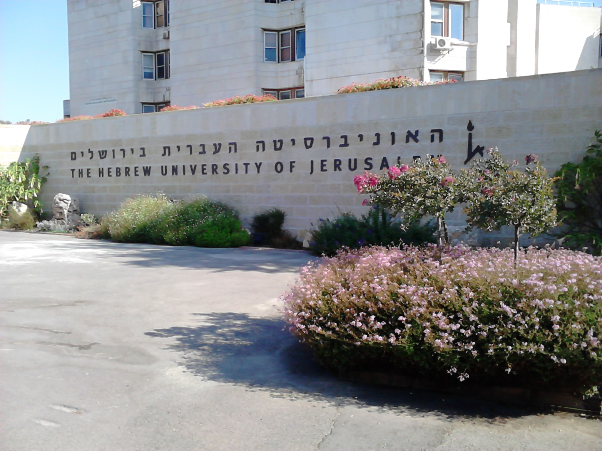 Kastner attended the Hebrew University of Jerusalem in 1964.