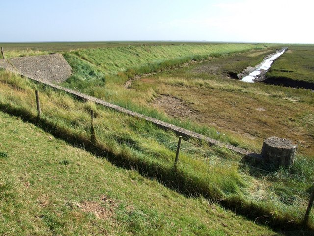 Inner Marshes near Cold Harbour - geograph.org.uk - 558391