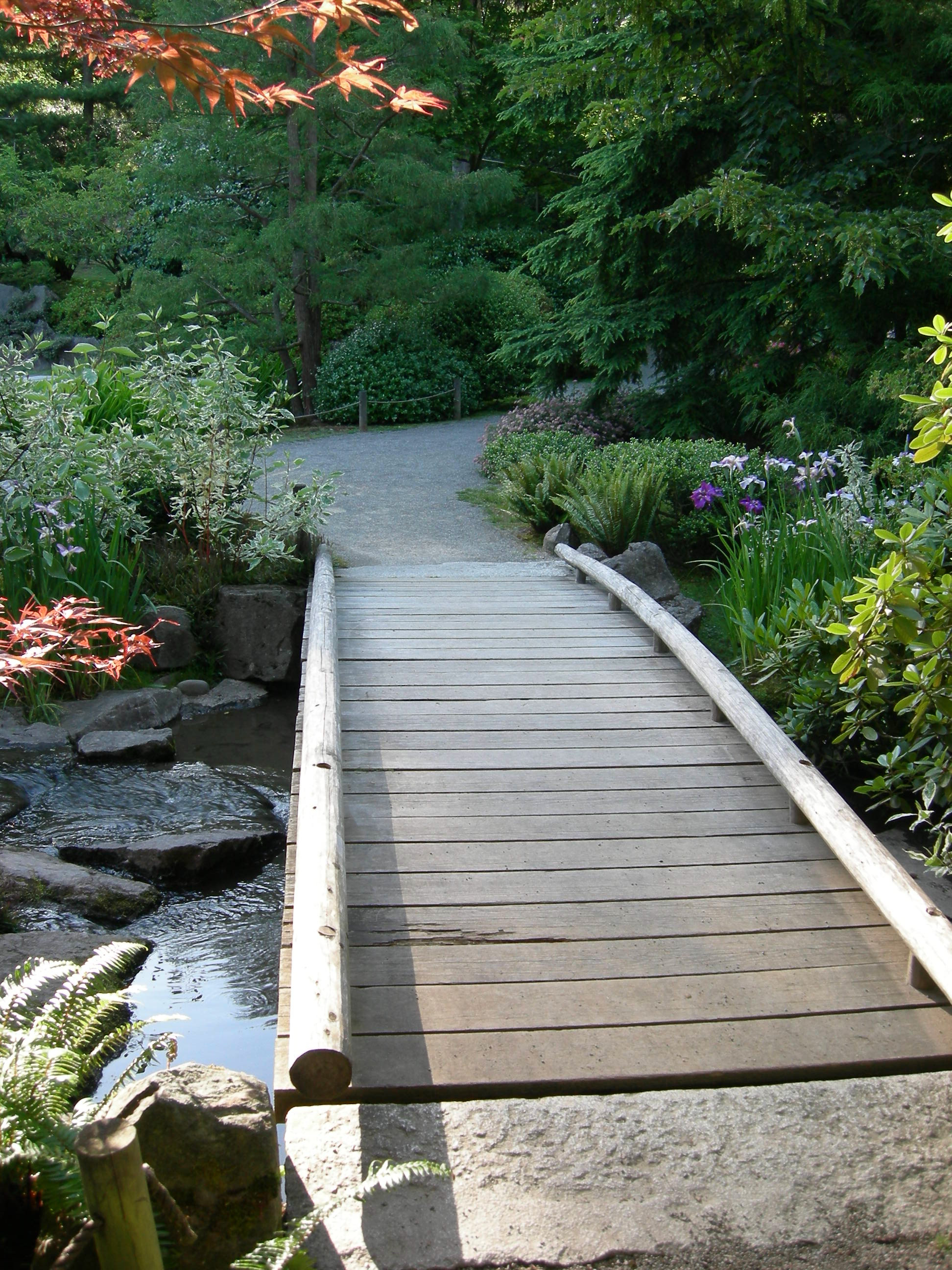 Awesome Backyard Bridge