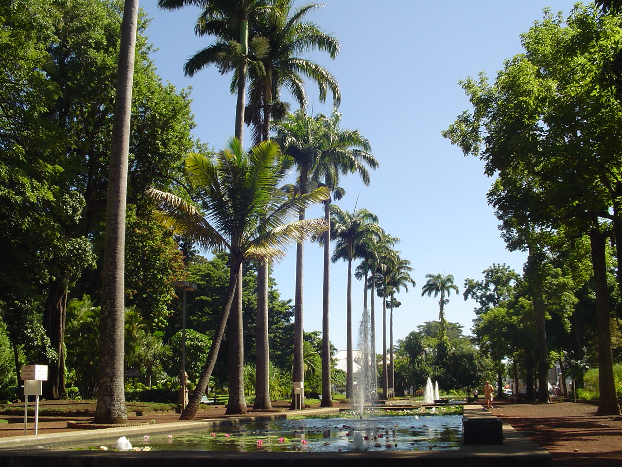 File jardin de letat saint denis 2855616910 jpg wikipedia - Table jardin hexagonale saint denis ...