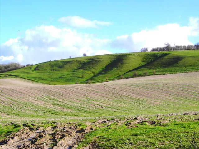 FileLand Form South Of Easton Royal Wiltshire  GeographOrgUk