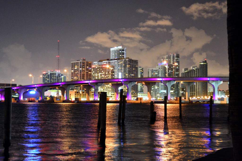 Image result for miami night time ocean view