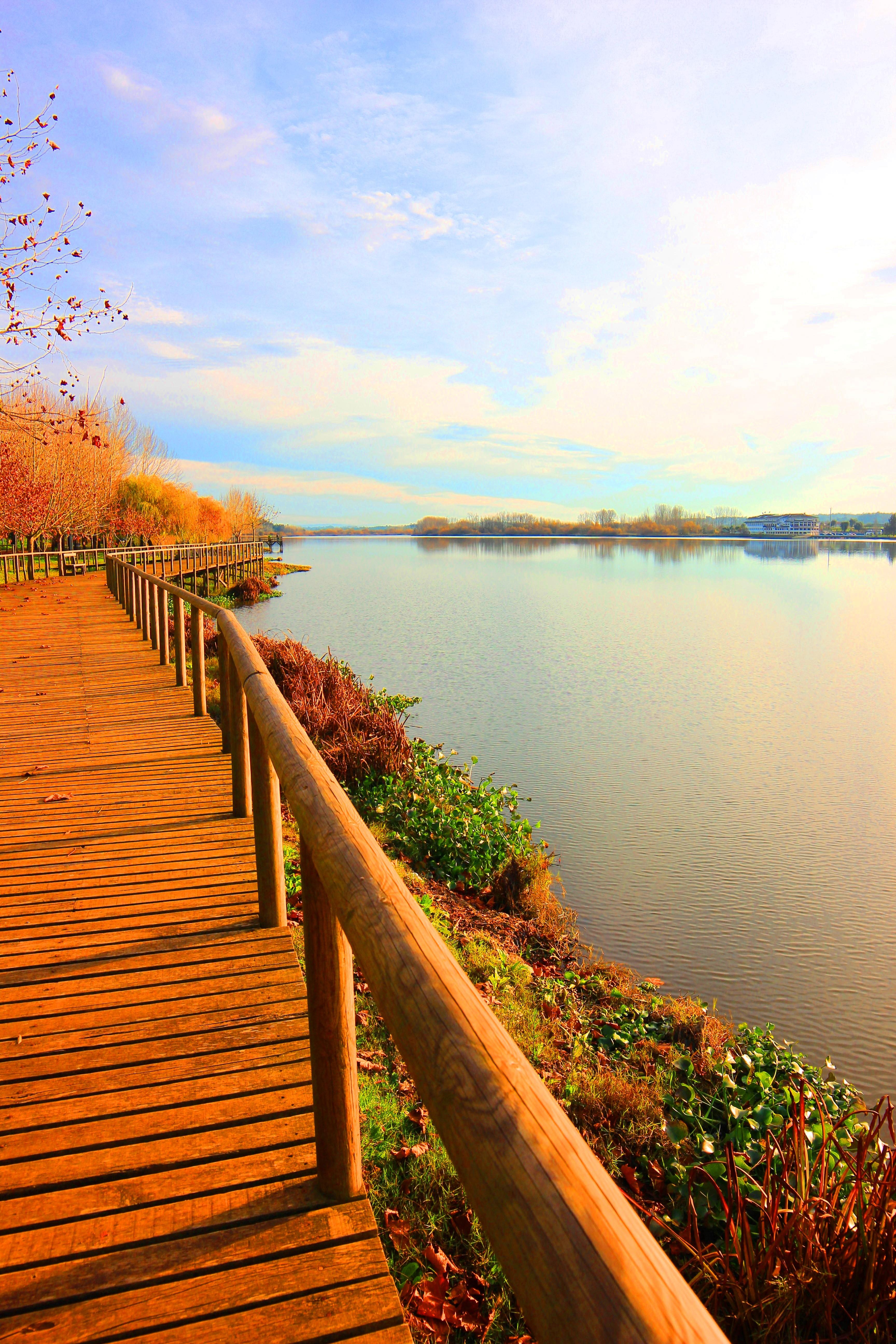 Passadiços na Ria de Aveiro, no lago da Pateira de Fermentelos