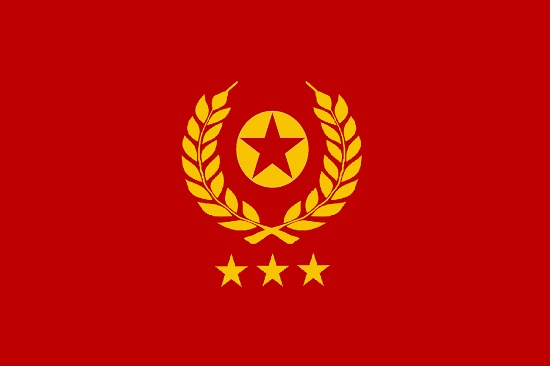 The Flag of the מדינת ביתנו (State of Beiteynu)