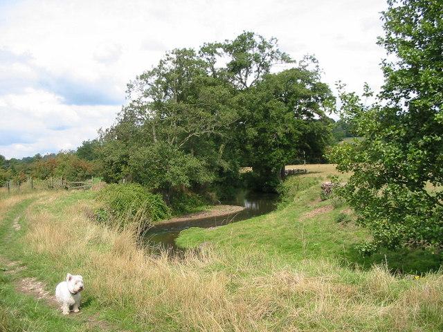 River Ecclesbourne - geograph.org.uk - 225386