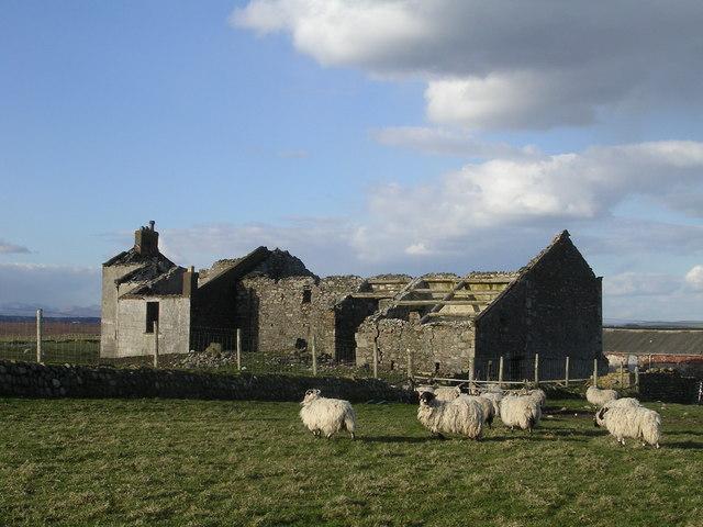 Ruined Farmhouse on South Walney Island - geograph.org.uk - 148757