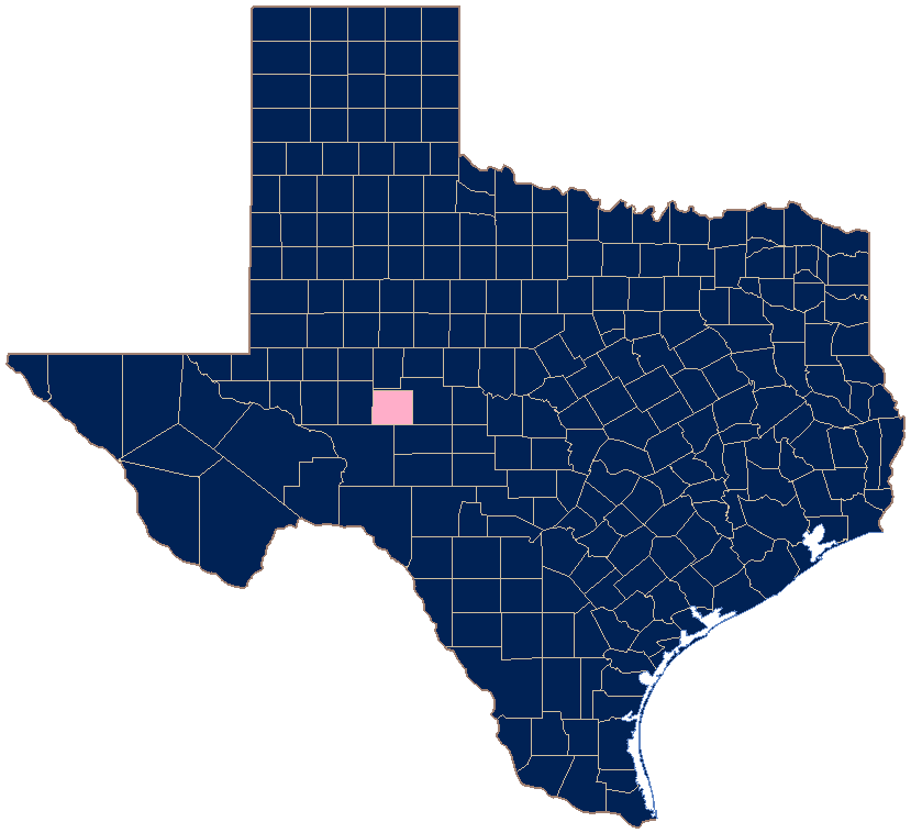 Same sex marriage in texas