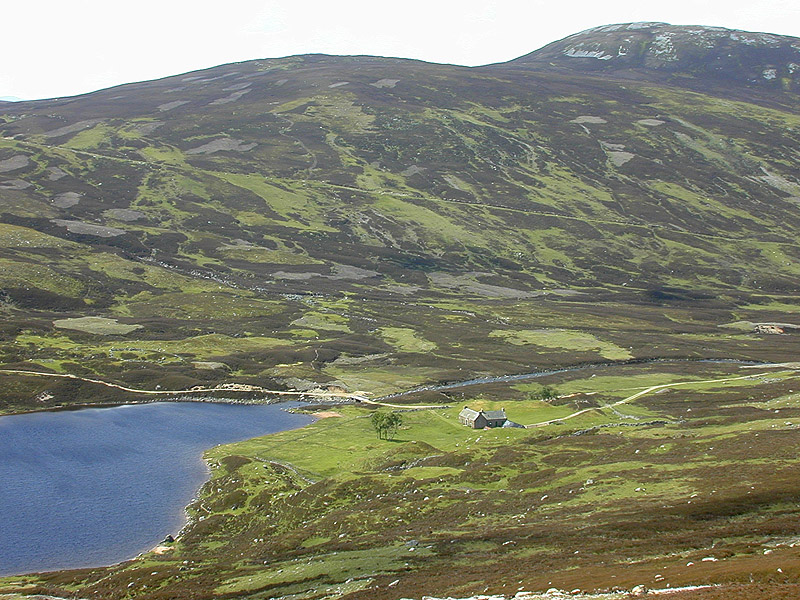 Slopes north of Loch Callater - geograph.org.uk - 586979